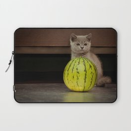 British gray kitten play with a juicy water-melon Laptop Sleeve