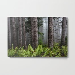 Pacfic Northwest Mountain Forest IV - 109/365 Landscape Photography Metal Print