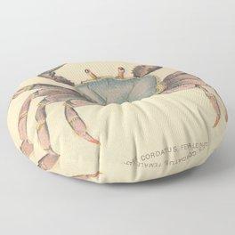 Vintage Mangrove Crab Illustration (1902) Floor Pillow