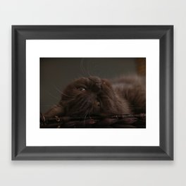 Lazy Daantje Framed Art Print