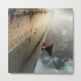 a moment suspended ...  Metal Print
