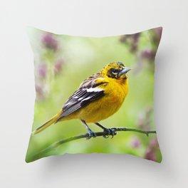 Spring Oriole Throw Pillow