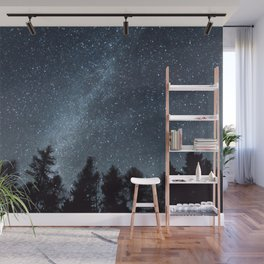 Milky Way in the Woods | Nature and Landscape Photography Wall Mural