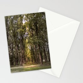 Light Tunnel Stationery Cards