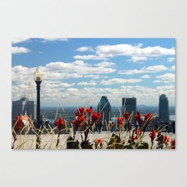 Flowers reaching for a Montreal Sky Canvas Print