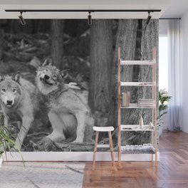 Fooling around wolfs Wall Mural