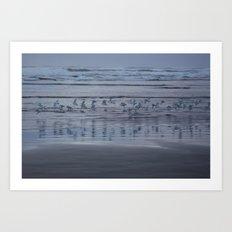Seaside Birds Art Print