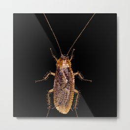 Bedazzled Roach Metal Print
