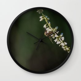 Memories of Spring-A single bee on flowers Wall Clock
