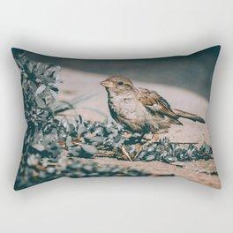 Summer Sparrow. Bird Photograph Rectangular Pillow