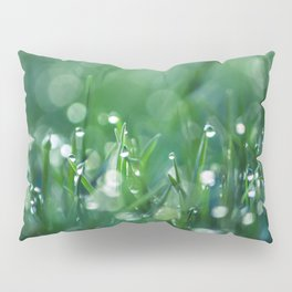 Microcosmos Pillow Sham