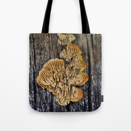 Spores on Wood #1 Tote Bag