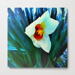 First Jonquil of Spring Metal Print
