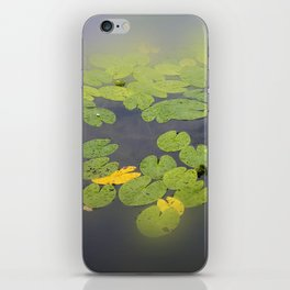 garden pond IV iPhone Skin