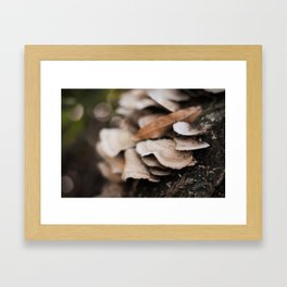 old log Framed Art Print