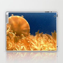 Sea Jellies Laptop & iPad Skin