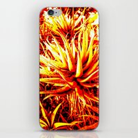 cacti iPhone & iPod Skins featuring CACTI by Charles Harry Mackenzie