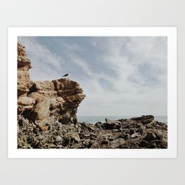 Bird Watch Art Print