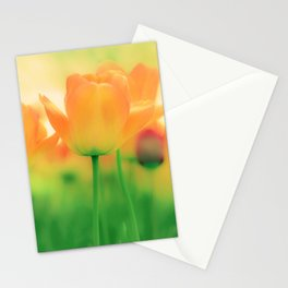 To Gather Orange Blossom Stationery Cards