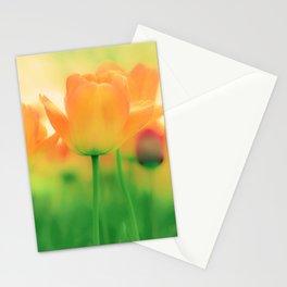 To Gather Orange Blossom Stationery Cards