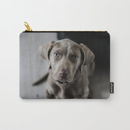 Weimaraner puppy looking sweet Carry-All Pouch