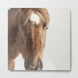 Vintage Style Horse Portrait in Color Metal Print