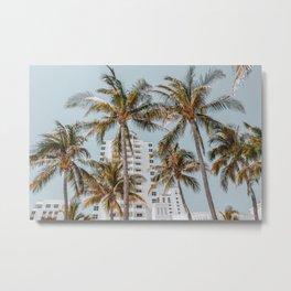 palm trees vii / miami beach, florida Metal Print