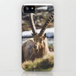 Ibex in the cold iPhone Case
