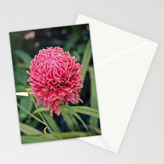 Tropical Flower: Thailand Stationery Cards