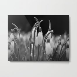 New beginnings and hope Metal Print