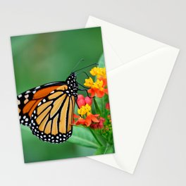 Monarch's Busy Day Stationery Cards