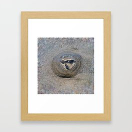 Beached Jellyfish Framed Art Print