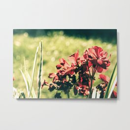 Season fading away the color Metal Print