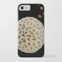 coral iPhone & iPod Cases featuring Coral by Wolff Prints