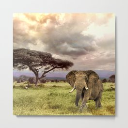 Elephant Landscape Collage Metal Print
