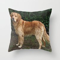 golden retriever Throw Pillows featuring Golden Retriever by Hyperhamster