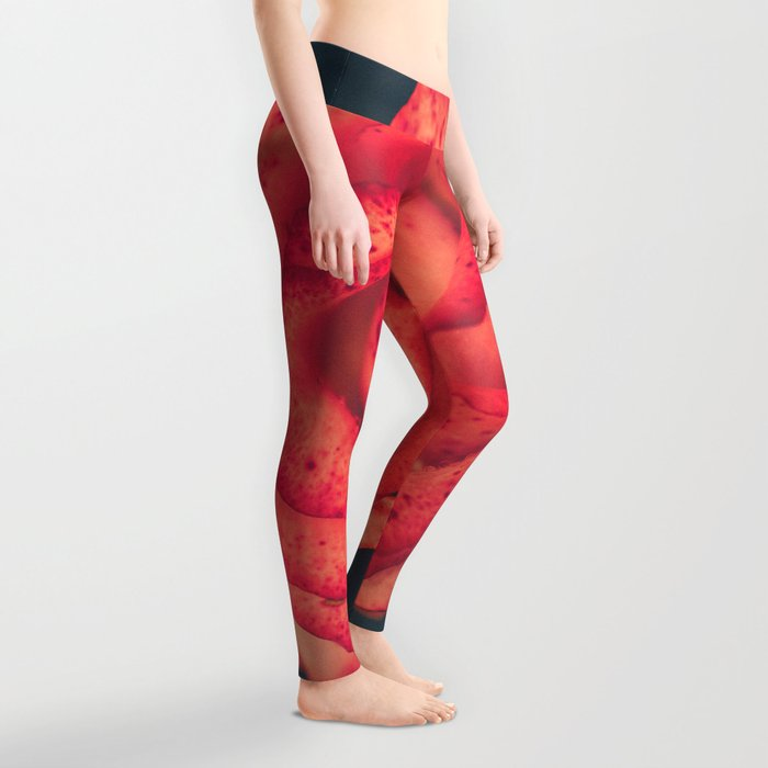 Treasure of Nature IV Leggings