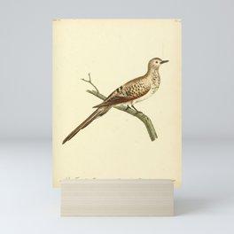 Pigeon 83 Mini Art Print