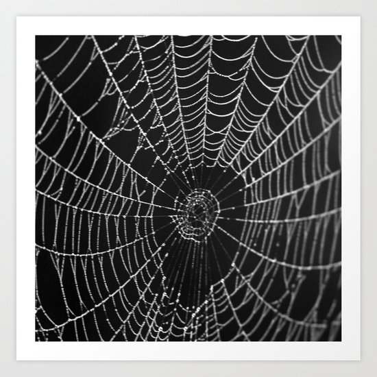 Web Of The Spider Art Print