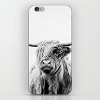 portrait iPhone & iPod Skins featuring portrait of a highland cow by Dorit Fuhg
