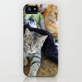 Friends & Other Relations iPhone Case