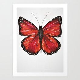 Borboleta Art Print
