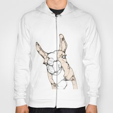 In which a llama interrupts Hoody