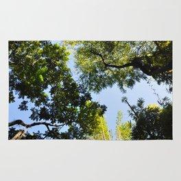 Canopy I Rug