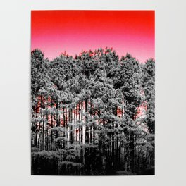 Gray Trees Candy Apple red Sky Poster