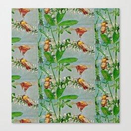 Vintage illustration bees Canvas Print