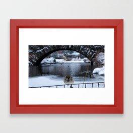 Snow in Central Park IX Framed Art Print