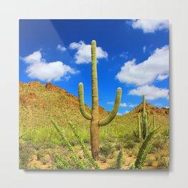 Iconic Saguaro Cactus - Iconic Southwest Metal Print