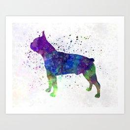 Boston Terrier 02 in watercolor Art Print