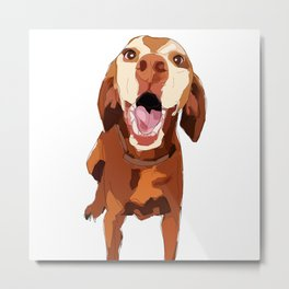 Beautiful Vizsla Metal Print